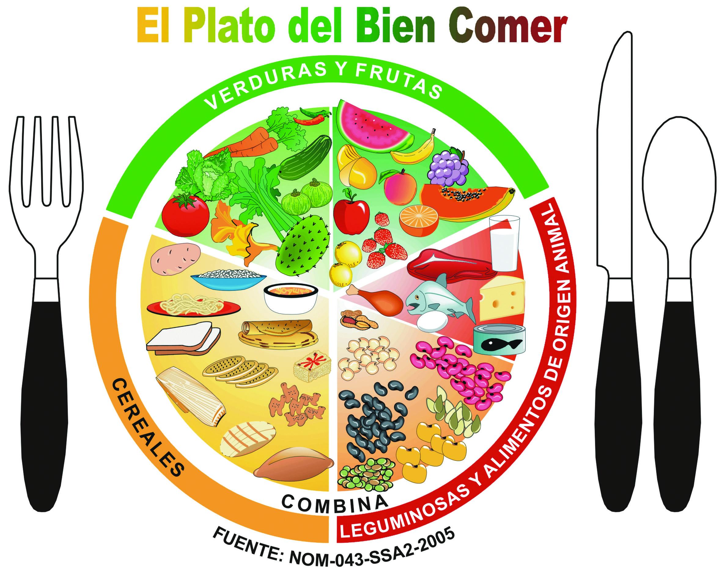 EL PLATO DEL BIEN COMER | Nutrióloga & Health Coach Martha Gómez