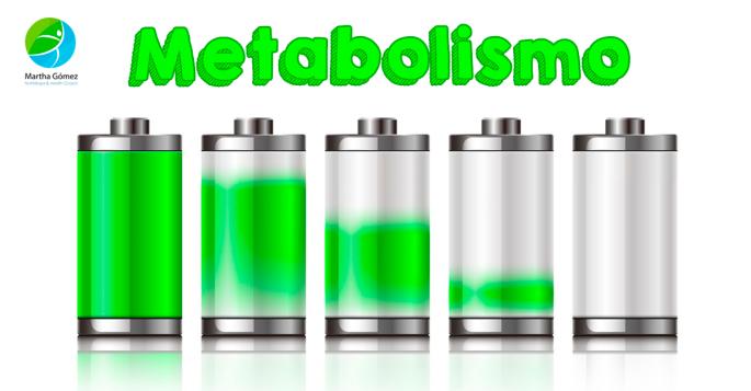blog-metabolismo
